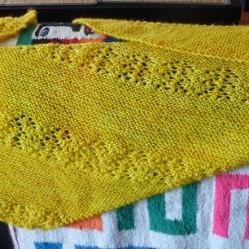 Knitting marmotte