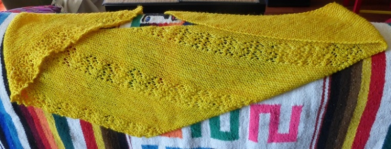 Knittingmarmotte1